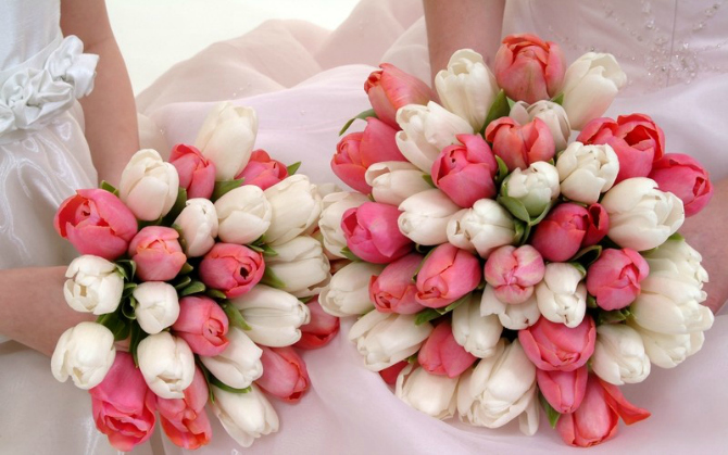 Belo roze Wannabe Bride: Bidermajeri od lala
