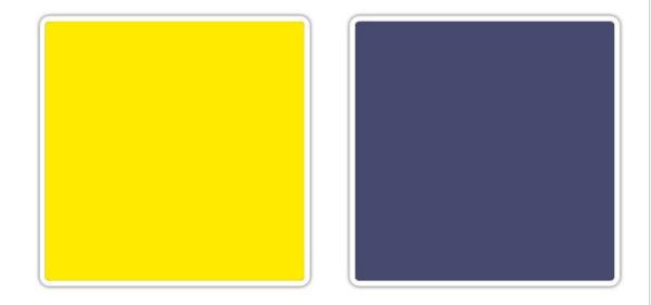 neon mastilo plava 10 novih kombinacija boja koje obožavamo