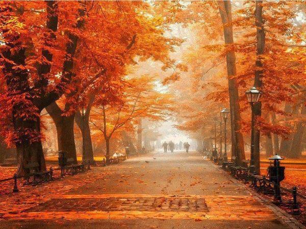 slika1 jesen Kad me jesen podseti na nas