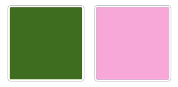 zelena roze 10 novih kombinacija boja koje obožavamo