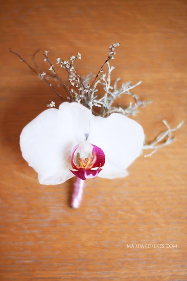 1394936 10202160282550881 140245916 n Wannabe Bride: Bloom Design   Jesenja inspiracija