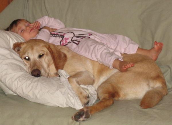 ah ta neodoljiva bica psi Pas = sreća = zdravlje