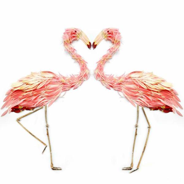 flamingosi Ptice od latica cveća