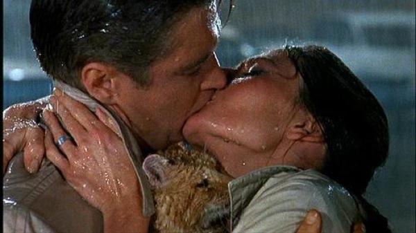 10.Jadna maca koju su za malo ugušili u filmu 50 najuzbudljivijih trenutaka na filmu (3. deo)