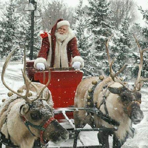 Bilo je puno žena u mom životu ali ne mogu da kažem da sam imao mnogo sreće u ljubavi Wannabe intervju: Deda Mraz, bez dlake na jeziku