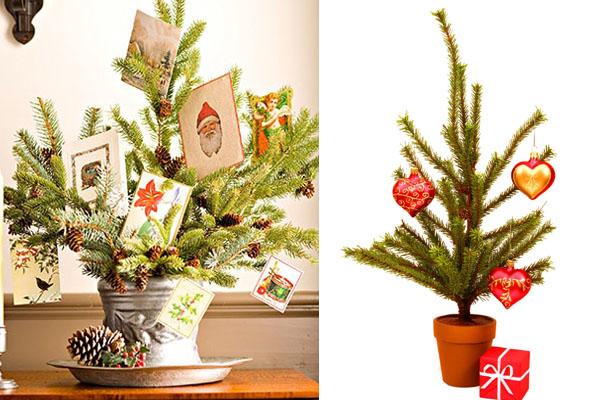 Drvce u saksiji Novogodišnje drvce u malom prostoru