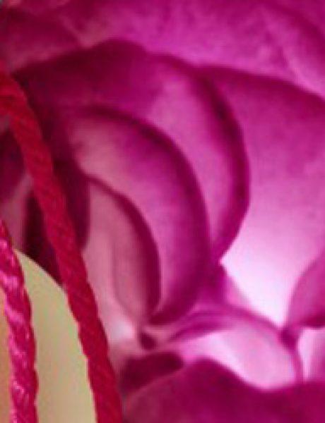 Volite li ruže?
