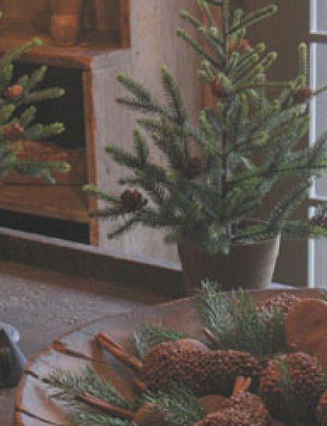 Šuma u vašem domu: Novogodišnja dekoracija