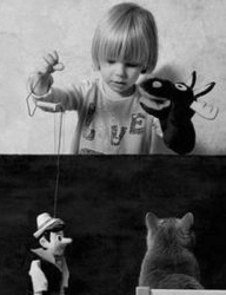 Lutka: Povratak brenda