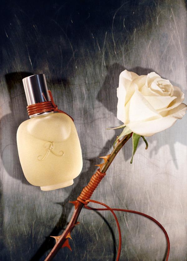 visuel rose dhomme web Volite li ruže?
