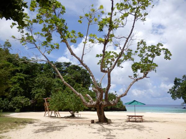 1152x864 frenchman s cove beach jamaica 10 destinacija koje morate posetiti ove godine