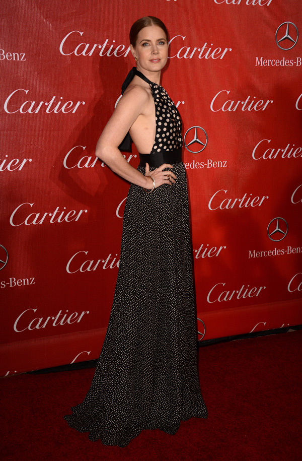 Amy Adams Fashion Police: Elegancija na crvenom tepihu
