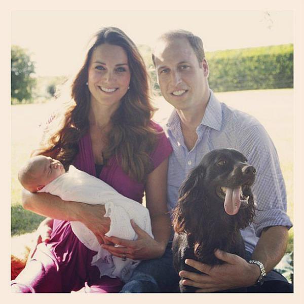 Duke and Duchess of Cambridge Krznene zvezde Instagrama: Ljubimci poznatih