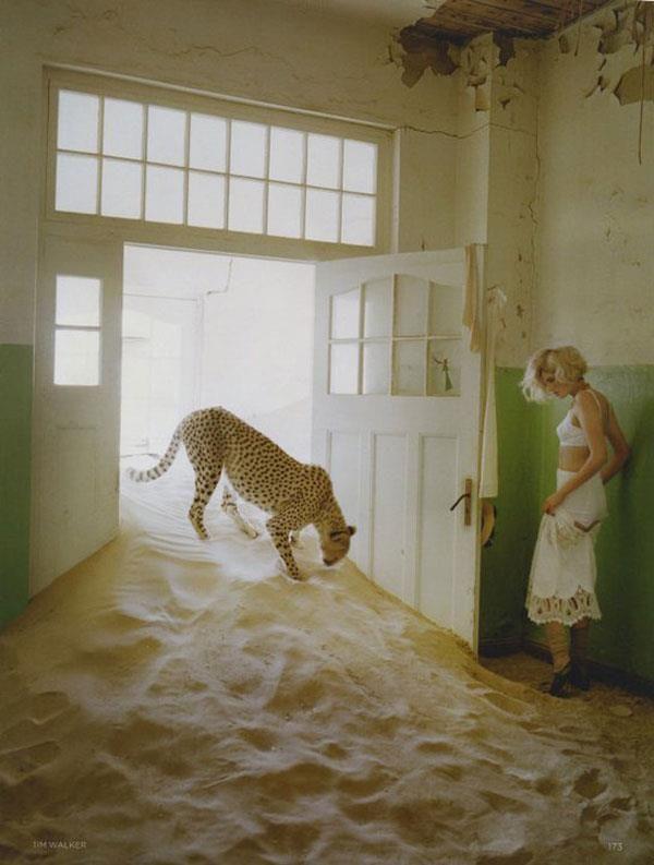 To sto joj pesak ruinira dom Crtanje pomoću svetlosti: Fotograf Tim Walker
