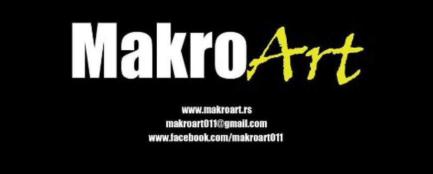 MakroArt – edukativna radionica za buduće studente i ljubitelje umetnosti