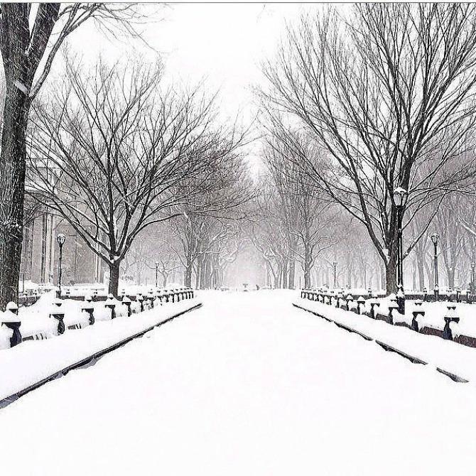 Slika 53 Njujork: Veje, veje i ne planira da stane