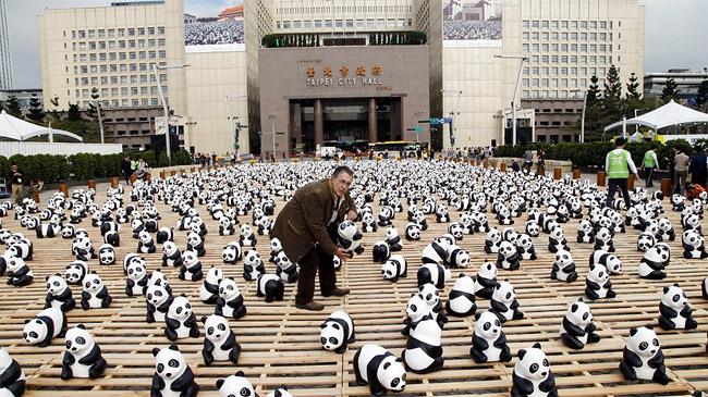 5 Ovo je tako kul: Izložba posvećena pandama