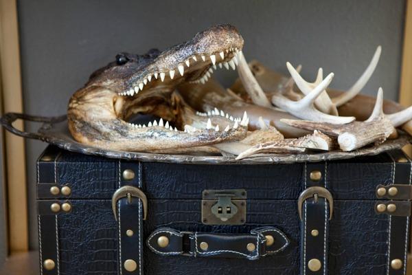 Ami Song krokodil rogovi Zavodljiv enterijer doma poznate blogerke: Ejmi Sung