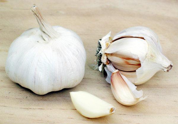 Garlic Ako ste na dejtu, nemojte ovo da jedete