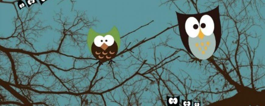 Noćne ptice i ritam života
