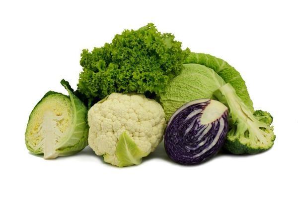 Slika 219 Pet suštinskih hranljivih materija za koje svaki vegetarijanac treba da zna