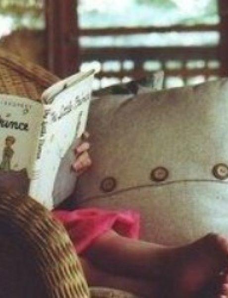 """Knjiga o životu: """"Mali princ"""""""
