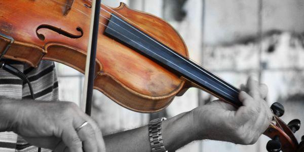 violinista svira 2 Kafanski bonton