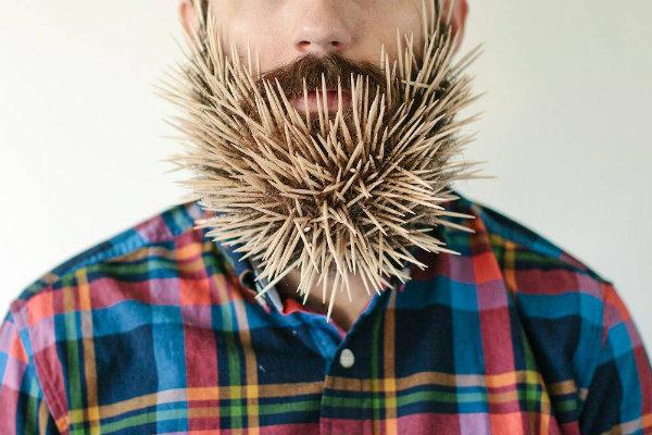 will it beard normal Da li se ložite na bradonje?