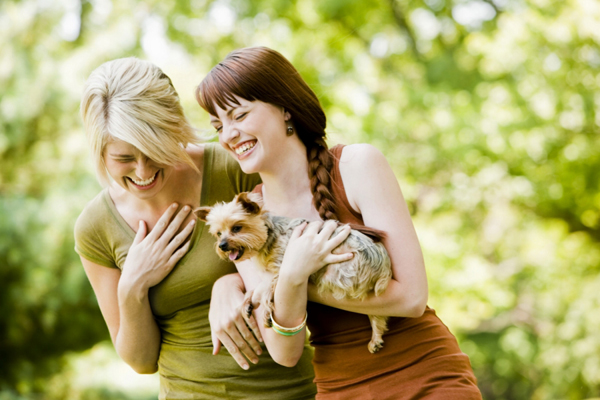 Companionship1 Ponovo se radujte životu