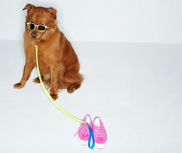 Shopbop Spring 2014 Accessories Edit 3 I psi vole modu