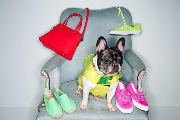 Shopbop Spring 2014 Accessories Edit I psi vole modu