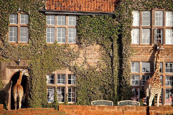 amazing hotel 16 10 Ovo je život: Najlepši hoteli na svetu