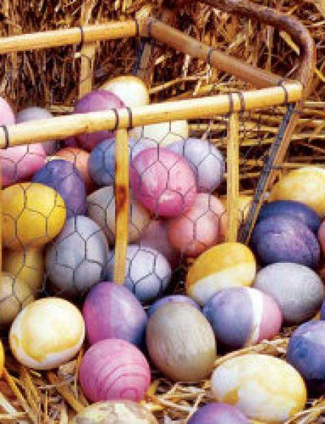 Neka vaša jaja budu drugačija