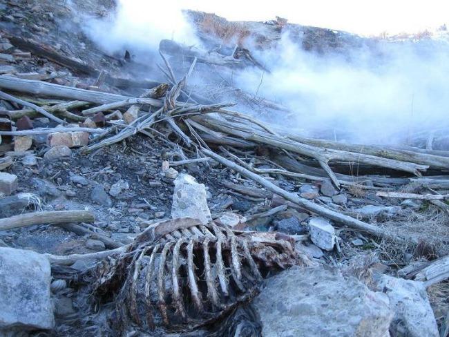 533 Tamo niko ne stanuje: Napuštena mesta na planeti zemlji