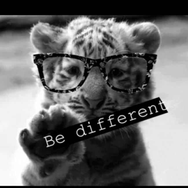 PRIP.89624588.4.2 Ko je ovde ko: Šta znači biti drugačiji?