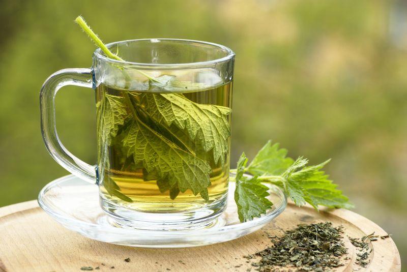 nettle tea Iskreno o celulitu: Cellulite Expert