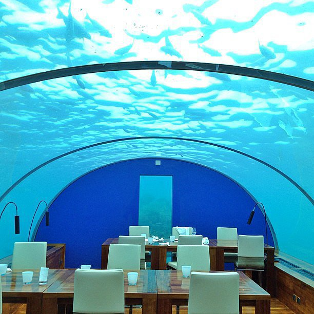 Eat Underwater Restaurant Maldives Put pod noge: Neobična iskustva sa putovanja