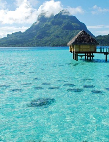 Pakuj kofere: Deset interesantnih činjenica o Bora Bori