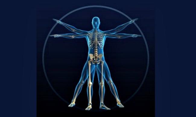 01 DNIK Cinjnice o ljudskom telu Doza nauke i kulture: Zanimljive činjenice o ljudskom telu