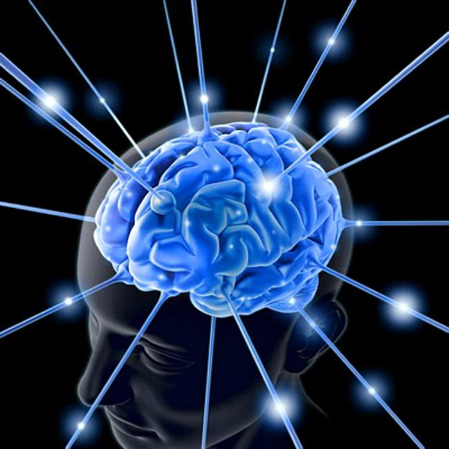 02 DNIK Zanimljice cinjenice o mozgu Doza nauke i kulture: Zanimljive činjenice o ljudskom mozgu