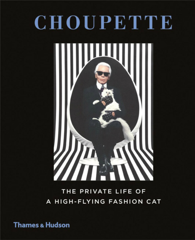 61Sb1YT5U8L  SL120 2970813a Da li ste znali: Karl Lagerfeld posvetio knjigu svojoj mački!
