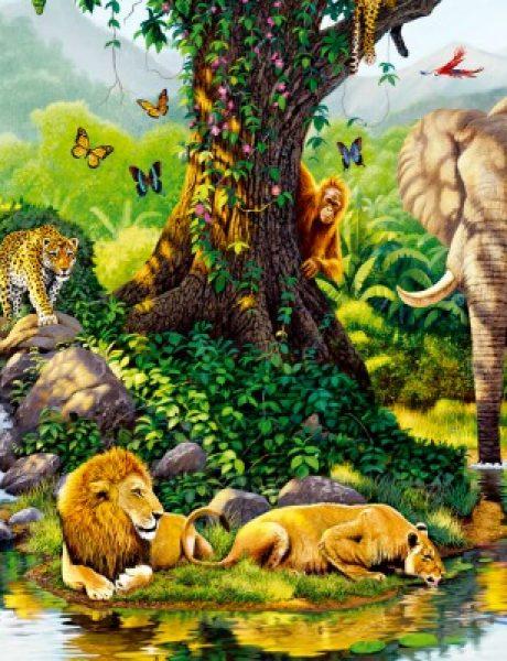 Doza nauke i kulture: Zanimljive činjenice o životinjama (1. deo)