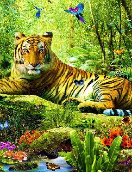Doza nauke i kulture: Zanimljive činjenice o životinjama (2. deo)