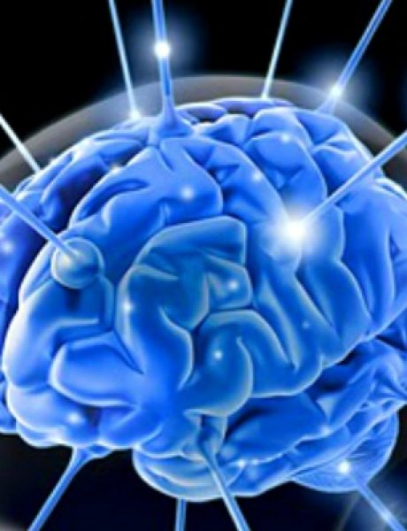 Doza nauke i kulture: Zanimljive činjenice o ljudskom mozgu