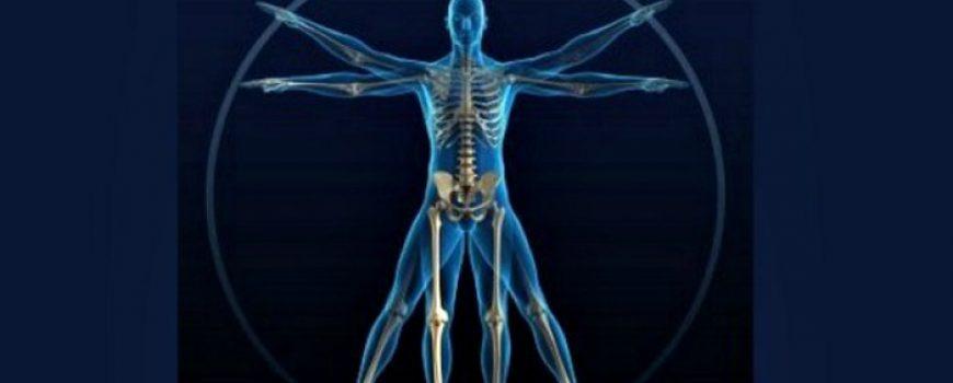 Doza nauke i kulture: Zanimljive činjenice o ljudskom telu