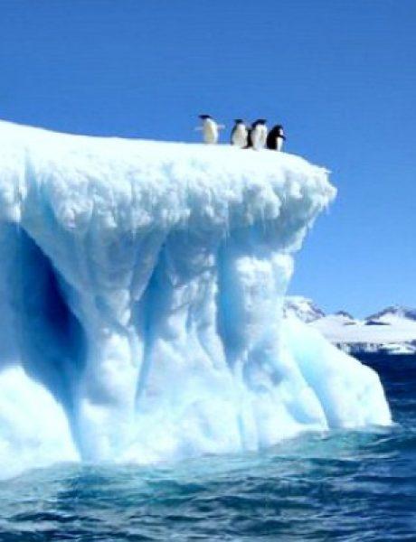 Doza nauke i kulture: Zanimljive činjenice o prirodi i njenim zakonima