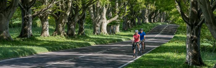 EdgeTban Novi GPS uređaji osmišljeni za vožnju biciklom: Garmin Edge Touring i Edge Touring Plus
