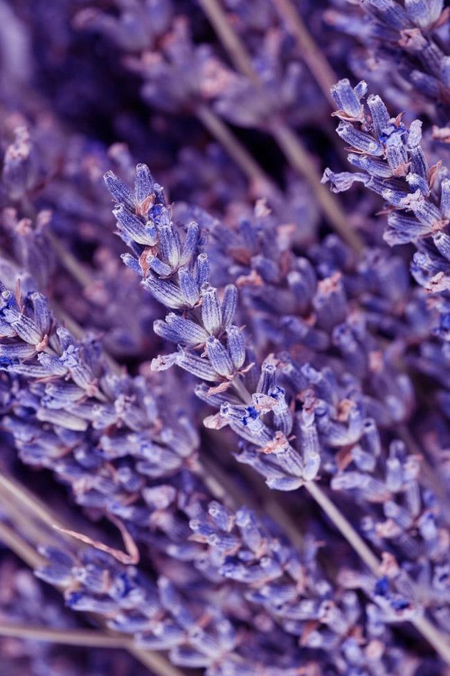 Lavender Beauty savet: 6 prirodnih lekova koji će vam pomoći kod nege stopala