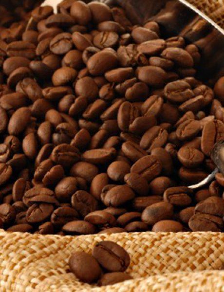 Magična zrna kafe: Instant recept za mršavljenje