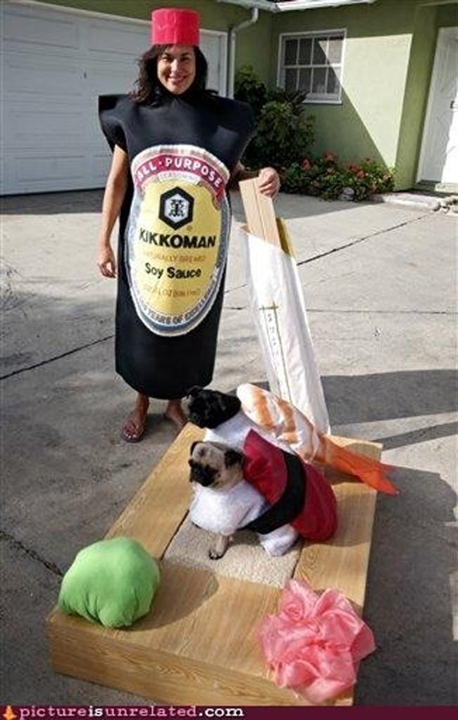 Kostimi za pse5 Spremni za maskenbal: Najluđi kostimi za pse